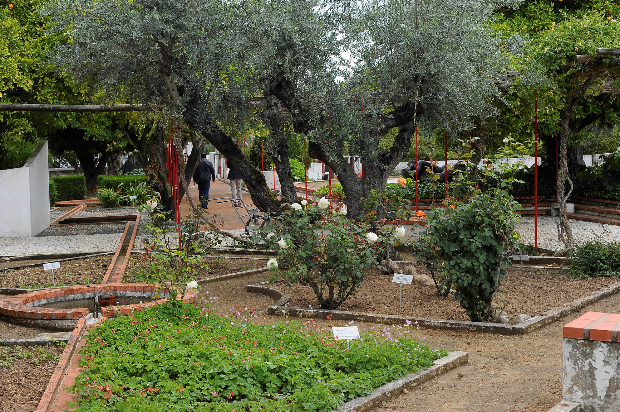 O Jardim-Horto é único. É um monumento vivo a Camões, uma homenagem ao escritor através das plantas que ele refere na sua obra